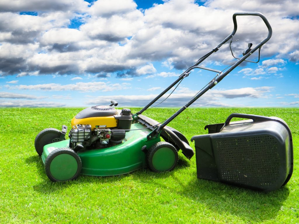 cut grass with lawnmower under blue sky with fluffy clouds