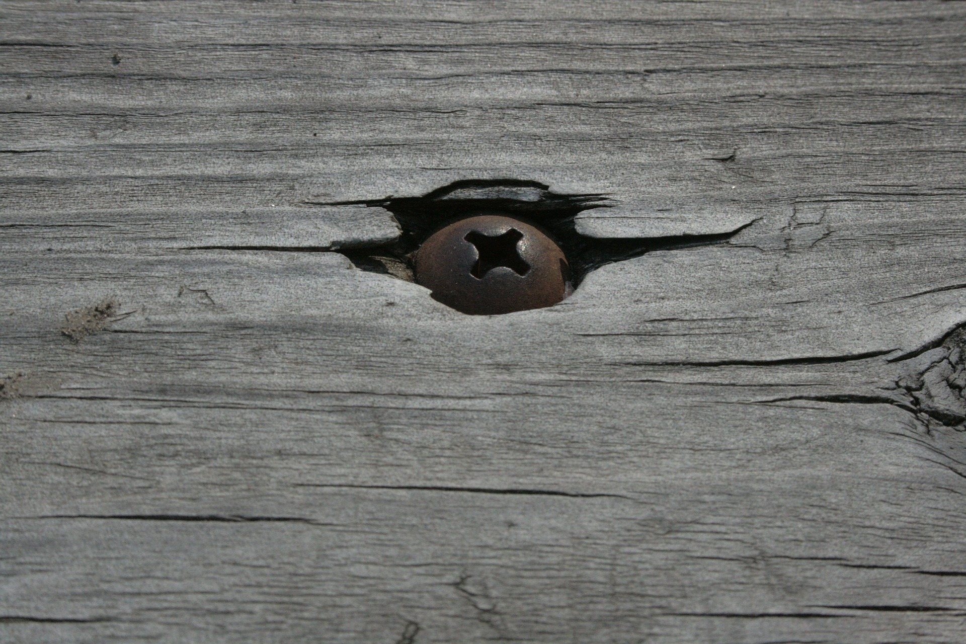 old rusty screw in splintered gray plywood